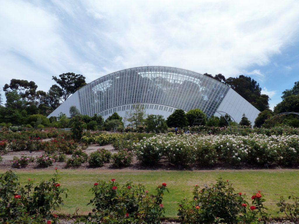 adelaide-botanic-gardens-rainforest-house
